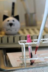 labor Kleintierpraxis Uelzen